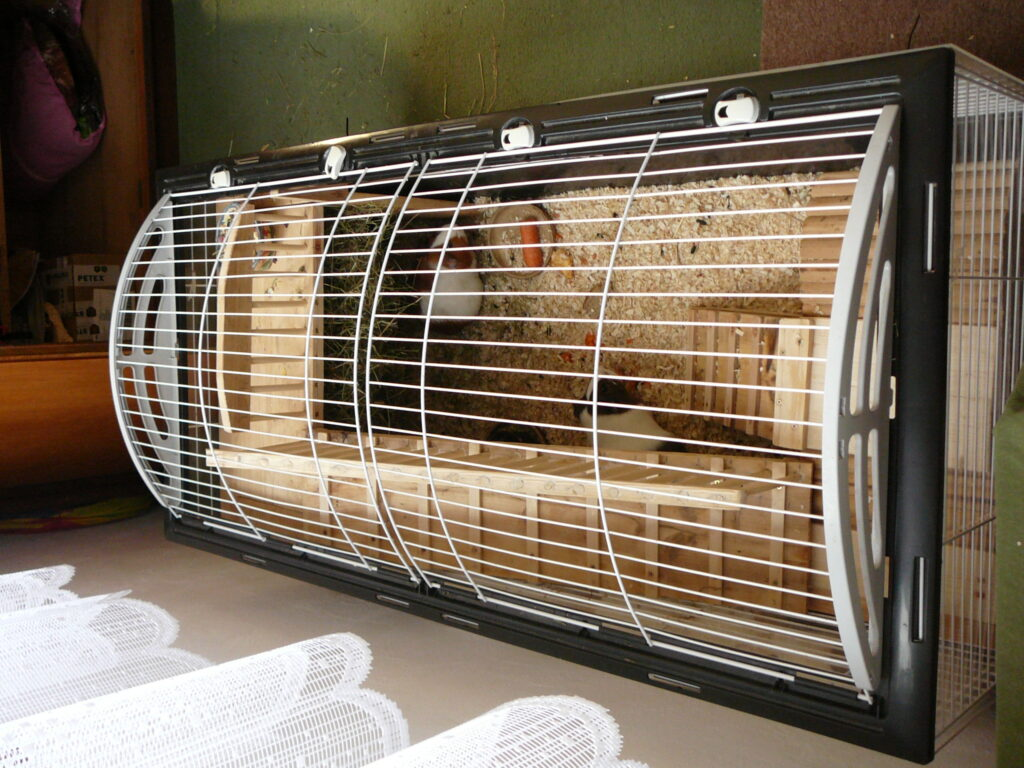 Inovace klece pro morčata
